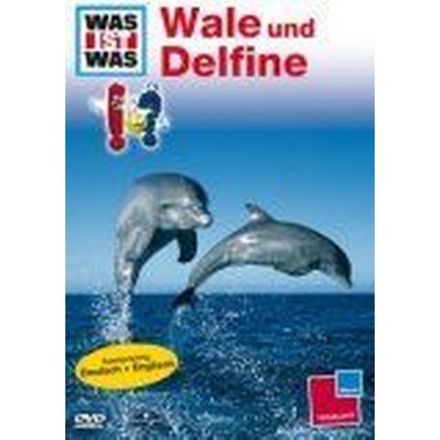 WAS IST WAS TV: Wale und Delfine [DVD]